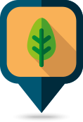 Tree Maintenance Symbol
